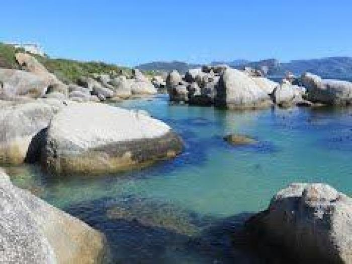 Boulders Beach. , a tour attraction in Cape Town, South Africa