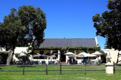 Blue Water Café , a tour attraction in Cape Town, South Africa