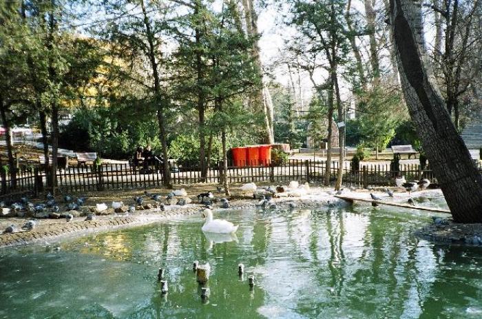 Kuğulu Park, a tour attraction in Ankara Türkiye