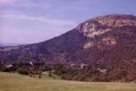 Aloe Ridge Hotel & Game Reserve   , a tour attraction in Johannesburg, Gauteng, South A