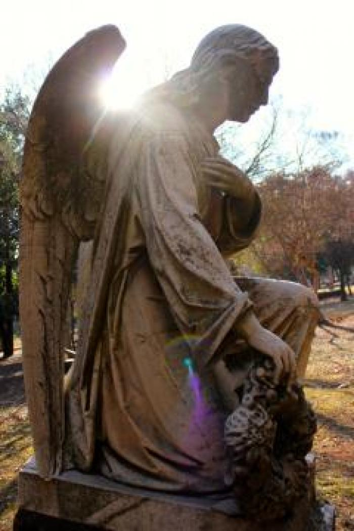 Braamfontein Cemetry, a tour attraction in