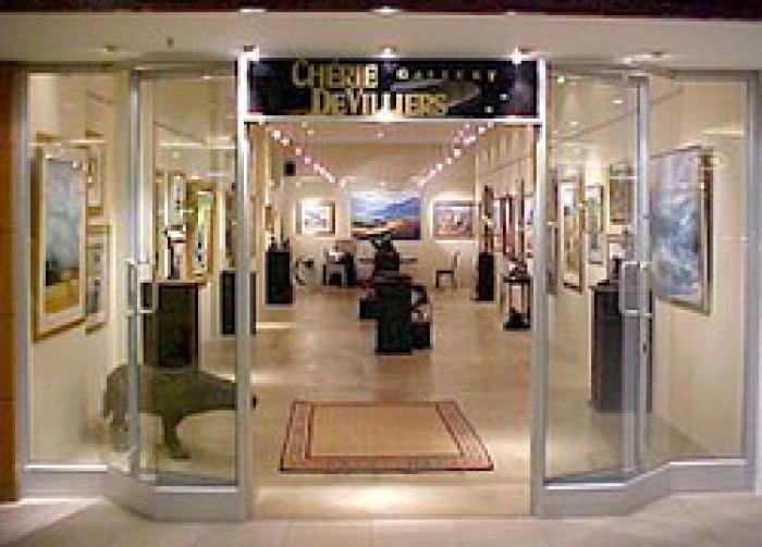 Cherie de Villiers Gallery    , a tour attraction in EGoli iNingizimu Afrika