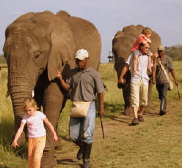 The Elephant Sanctuary, a tour attraction in EGoli iNingizimu Afrika