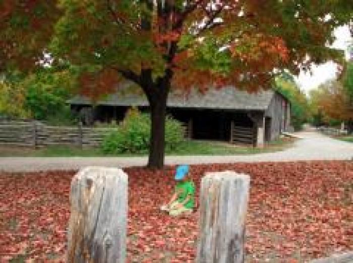 Black Creek Pioneer Village, a tour attraction in