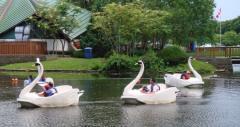 Centreville Amusement Park, a tour attraction in