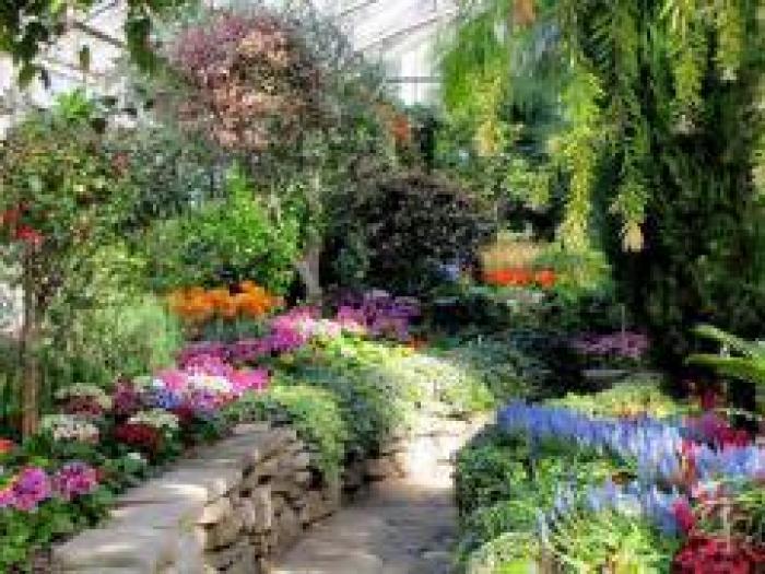 Allan Gardens, a tour attraction in