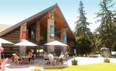 McMichael Canadian Art Collection, a tour attraction in
