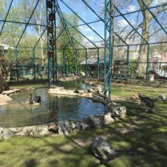 Zoološki vrt grada Beograda, a tour attraction in Београд Србија