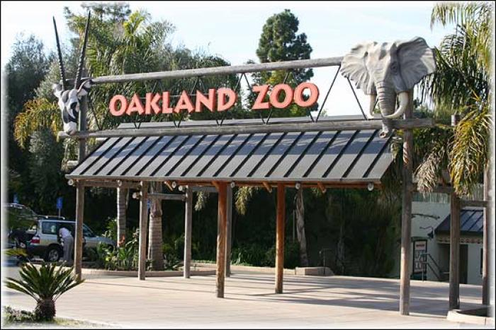 Oakland Zoo, a tour attraction in Oakland United States