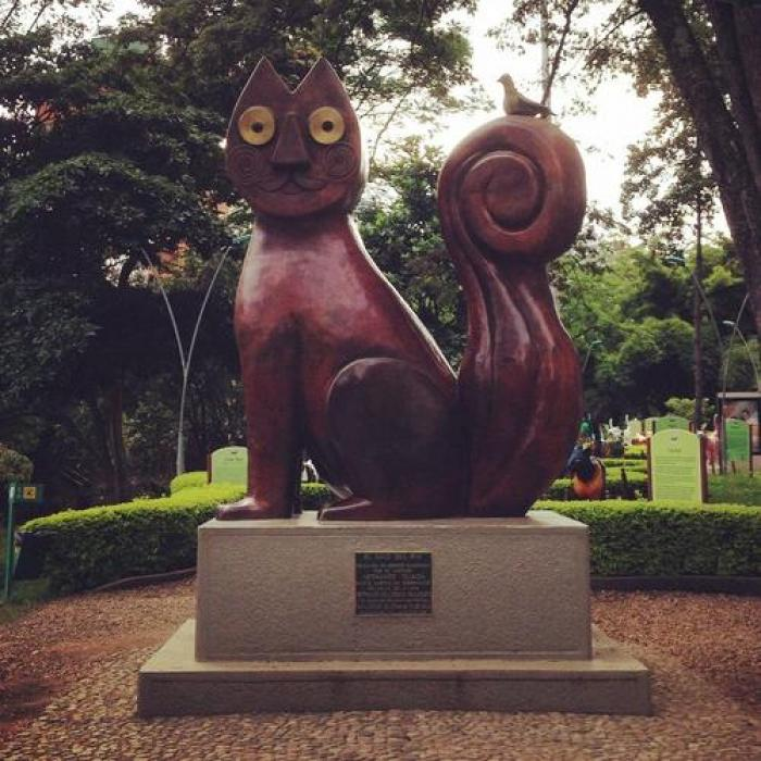El Gato del Rio, a tour attraction in Cali Colombia