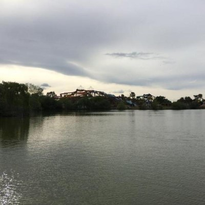 Lake Cunningham Park, a tour attraction in San Jose United States