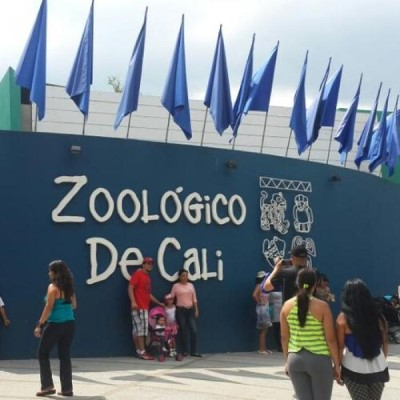 Zoológico de Cali, a tour attraction in Cali Colombia