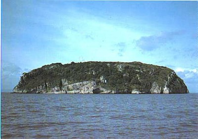 Steep Holm Nature Reserve, a tour attraction in Bristol, United Kingdom