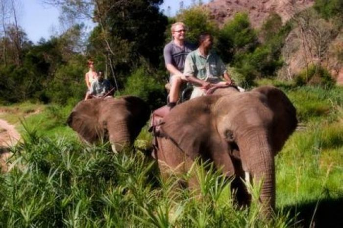 Ride an elephant, a tour attraction in The Garden Route South Africa