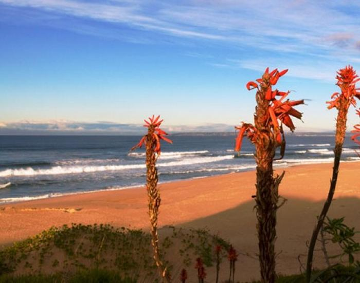 Pienaar Strand, a tour attraction in The Garden Route South Africa