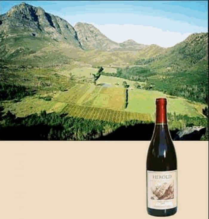 Herold Wine, a tour attraction in The Garden Route South Africa