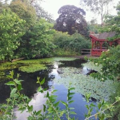 Royal Botanic Garden Edinburgh - Off Inverleith House Lawn, a tour attraction in Edinburgh, United Kingdom