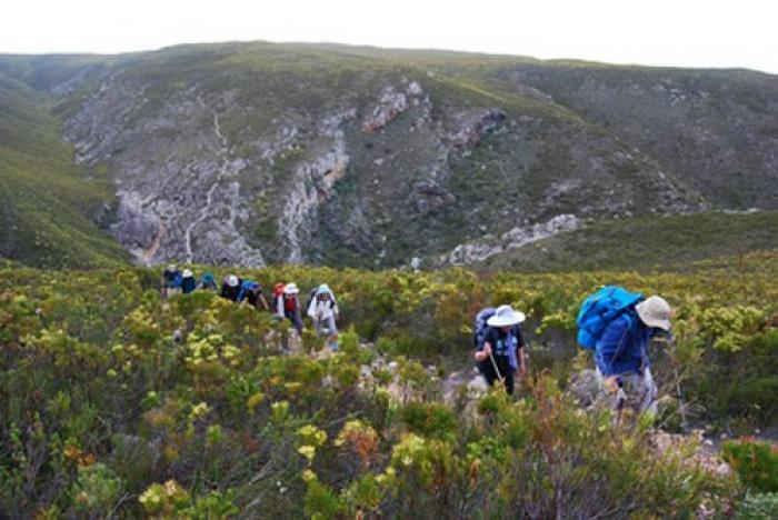 The Otter hiking trail, a tour attraction in The Garden Route South Africa
