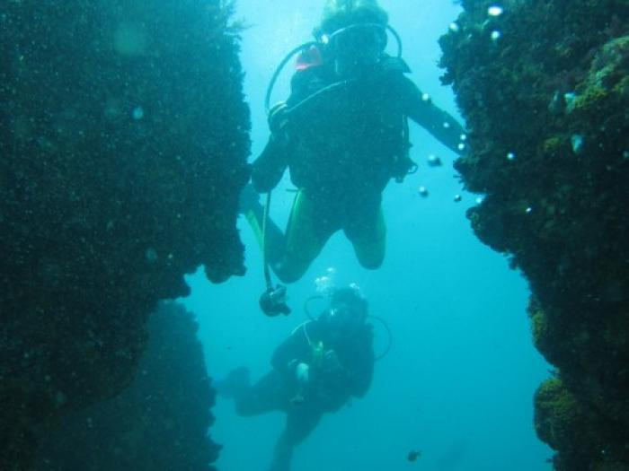 Scuba Diving in Storms River, a tour attraction in The Garden Route South Africa