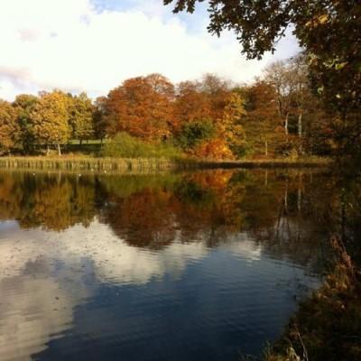 Winterbourne House & Garden, a tour attraction in Birmingham, United Kingdom