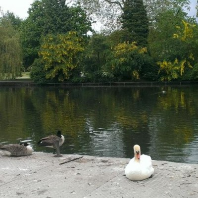 Cannon Hill Park, a tour attraction in Birmingham, United Kingdom