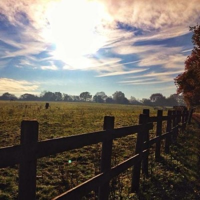Woodgate Valley Country Park, a tour attraction in Birmingham, United Kingdom