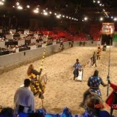Medieval Times Dinner & Tournament, a tour attraction in Dallas, TX, United States